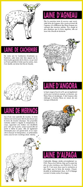 illustration infographique des laines animales