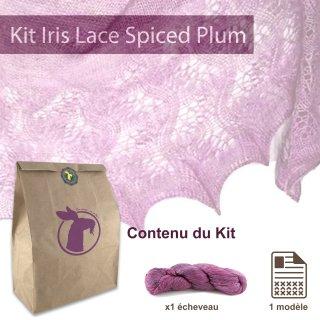 Kit Châle Iris Lace Spiced Plum - Madlaine