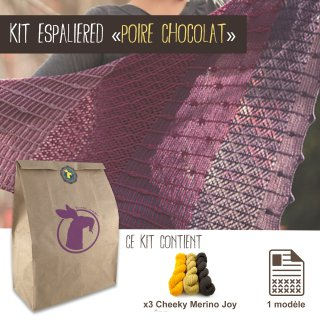 Kit Châle Espaliered Poire Chocolat - Madlaine