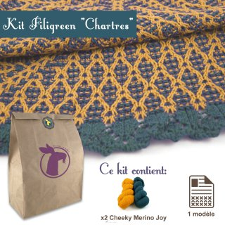 Kit Châle Filigreen Chartres - Madlaine