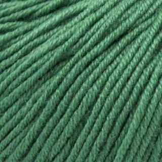 Laine mérinos Gueret Vert Algues 056