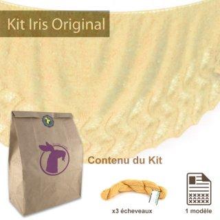 Kits femme Kit Châle Iris Original Mustard Spice