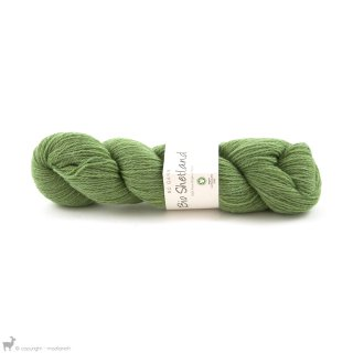Laine de mouton Bio Shetland Vert Tilleul SH11