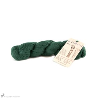 Baby Llama Vert Algue I0961 - Illimani Yarn