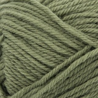 Laine de mouton Peer Gynt Vert Mousse 9364