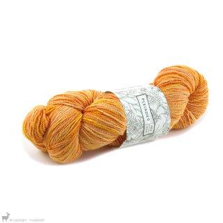 Pleiades Sock Fujimoto - Vegan Yarn