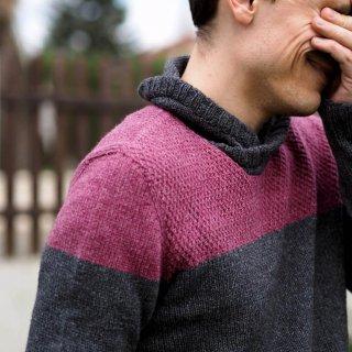 Modèles homme Modèle pullover Grand Passiflore par Hel et Zel