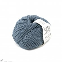 Laine mérinos Soyeuse Bleu Orage 110 Bain 322