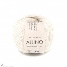 Fil de coton Allino Blanc Natural 05