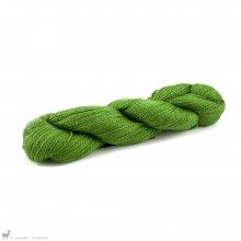 Scrumptious 4PlyJen's Green