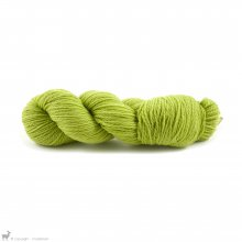 Merino d'Arles Canopée 302 - Rosy Green Wool