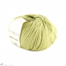 Fil de coton Softknit Cotton Vert Saule 587