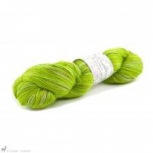 Albireo Neon Catgrass